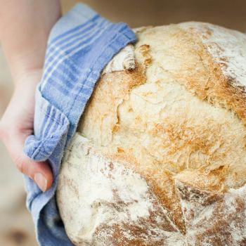 Taller de panes artesanos