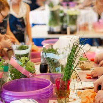 Cocina de verano para niños (de 8 a 14 años)