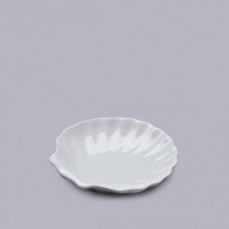 Concha Porcelana